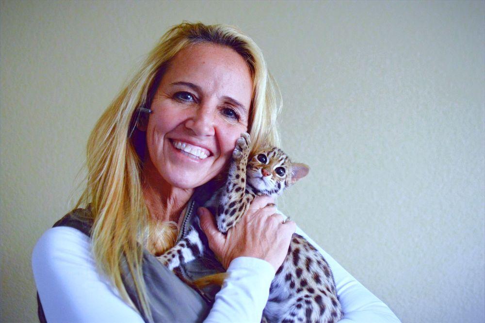 Kitty Winks: Lavon, TX