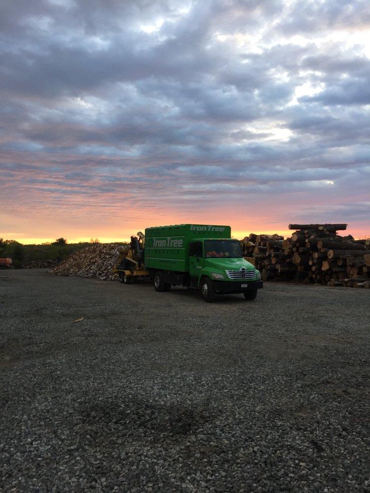 Iron Tree Service - 16 Reviews - Tree Services - 62 Dunham