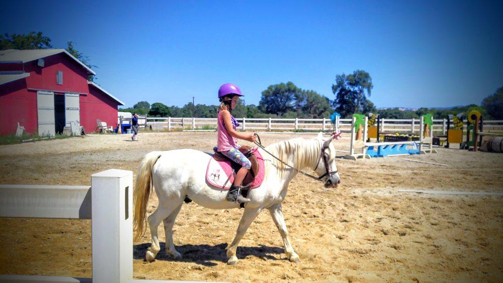 Stardust Pony Dreams: 333 Stardust Ln, Lincoln, CA