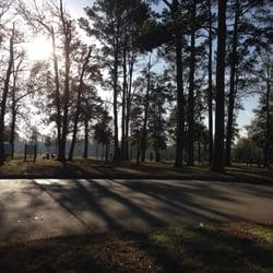 Barkers park woods