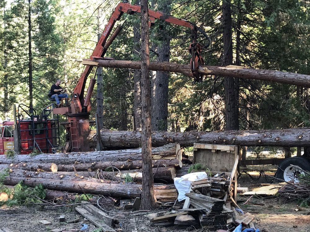 Ridge Logging: 16720 Jacks Rd, Nevada City, CA