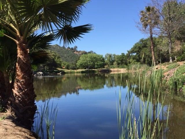 Click It Rv >> Lilac Oaks Campground & RV Park - 79 Photos & 32 Reviews ...
