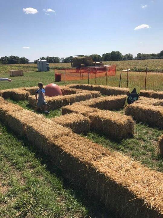 Boiler Corn Maze: 4604 Pretty Prairie Rd, Battle Ground, IN