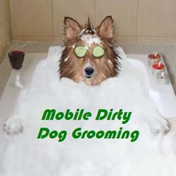 Mobile dirty dog grooming pet groomers 4290 bells ferry rd photo of mobile dirty dog grooming kennesaw ga united states in solutioingenieria Gallery