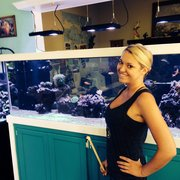 Custom Tank And Photo Of Amazing Aquariums Daytona Beach Fl United States