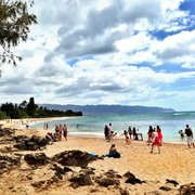Laniakea Beach - 825 Photos & 310 Reviews - Beaches - 61-676 ...
