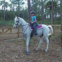 Casperey Stables - Horseback Riding - 2330 D Rd, Loxahatchee, FL ...