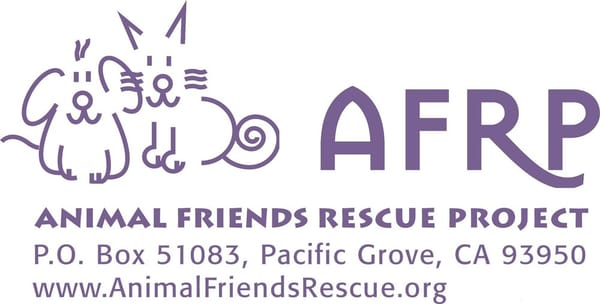 Welcome to Geelong Animal Rescue.