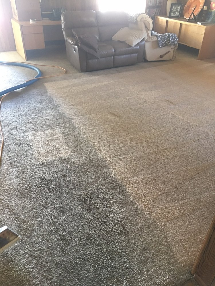 Zerorez 103 Photos Amp 230 Reviews Carpet Cleaning