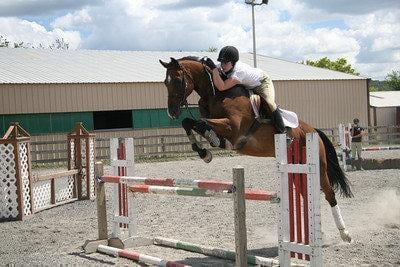Top Notch Equestrian Centre: 659 S Main St, Stewartsville, NJ