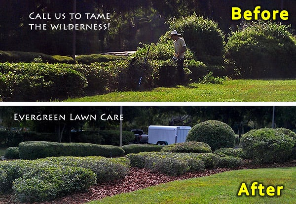 Evergreen Lawn Care of Gainesville: 2708 NE Waldo Rd, Gainesville, FL