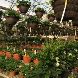 Photo Of Village Green Nursery Rockford Il United States