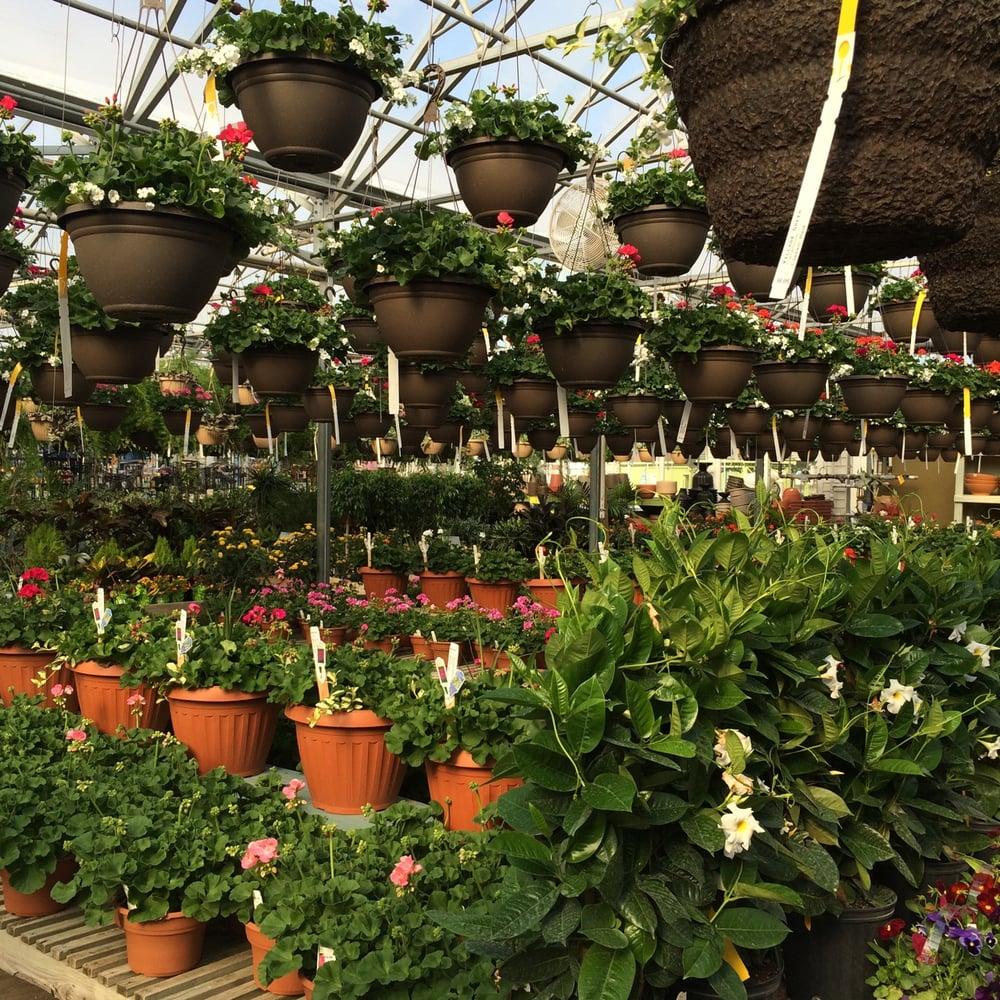 Village Green Nursery - Nurseries & Gardening - 6101 E Riverside ...