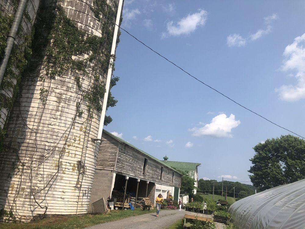 Wipledale Farm Greenhouse: 7730 Big Island Hwy, Bedford, VA