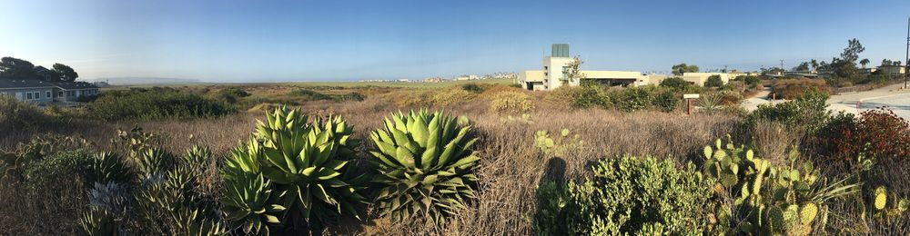 Tijuana Estuary Visitor Center