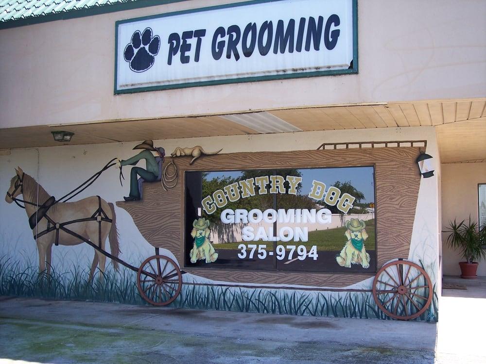 Country Dog Grooming Salon: 4160 Rowan Rd, New Port Richey, FL