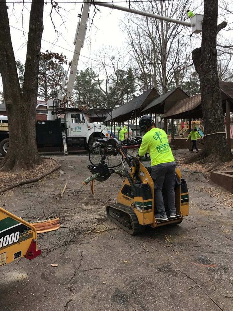 KnowTrees Professional Tree Service: Bethlehem, GA