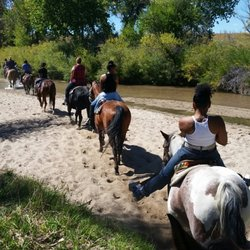 Mile Stables Photos Reviews Horseback Riding - 12 equestrian places in the us