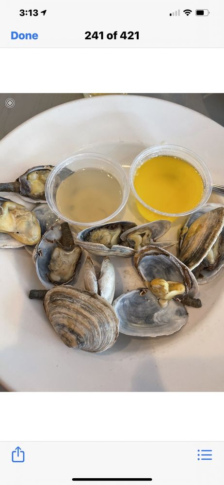 Steamers of Naples