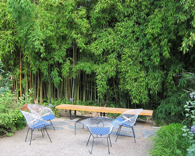 Outdoor Room Bamboo Provides Year Round Privacy And