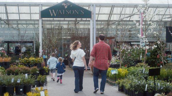Watson S Greenhouse And Nursery 6211 Pioneer Way E Puyallup
