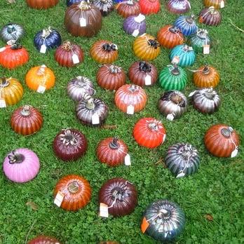 Cake Art San Rafael Hours : Glass Pumpkin Harvest - Arts & Entertainment - 1408 ...