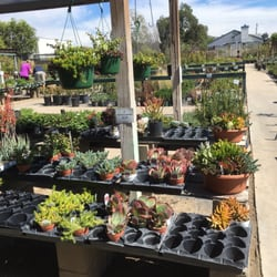 Photo Of Plant House Nursery El Cajon Ca United States