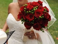 Profusion Floral Design: 2967 Middle Fork Rd, Boulder, CO
