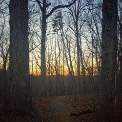 Photo of North Carolina Botanical Garden - Chapel Hill, NC, United States. Sunset