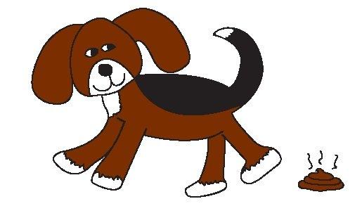 Dog Doody Duty: Minoa, NY