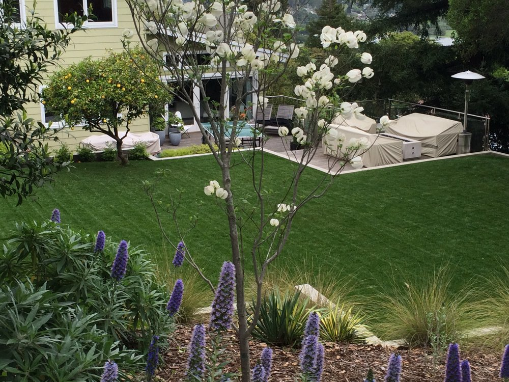Clean Air Lawn Care: 775 E Blithedale Ave, Mill Valley, CA