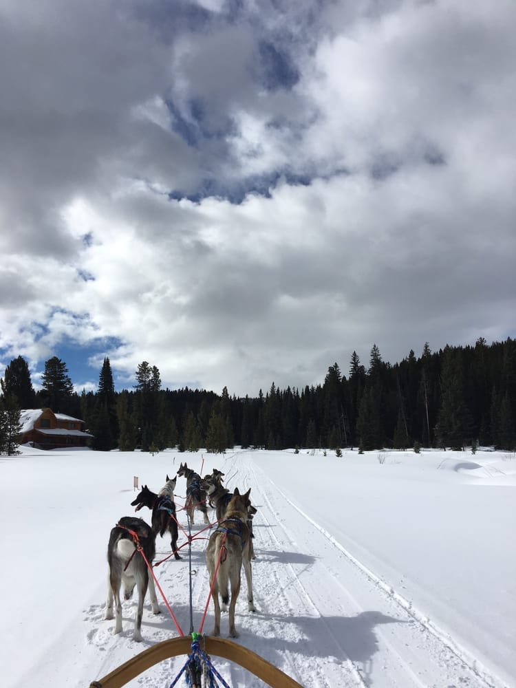 Klondike Dreams Sled Dog Rides: 1630 Targhee Pass Hwy, West Yellowstone, MT