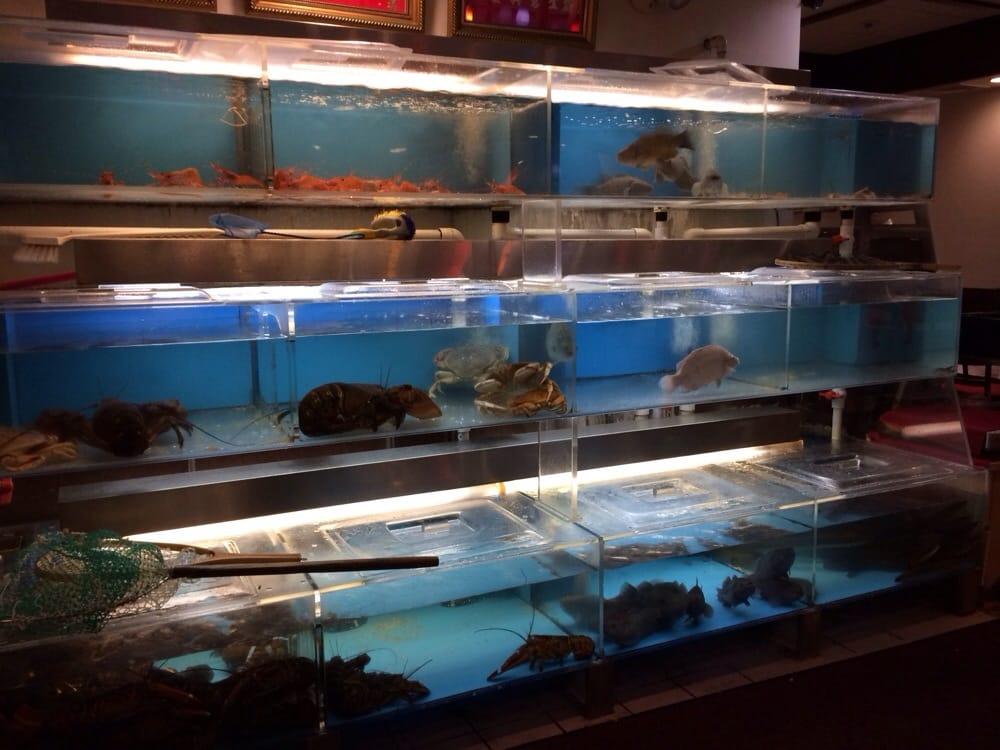 Sea aquarium - Yelp