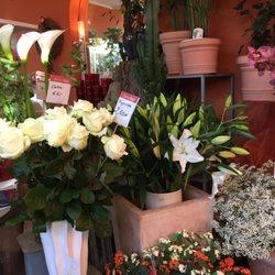 Blumen Maaß - 14 Fotos - Blumenladen & Florist - Herzogstr. 1 ...