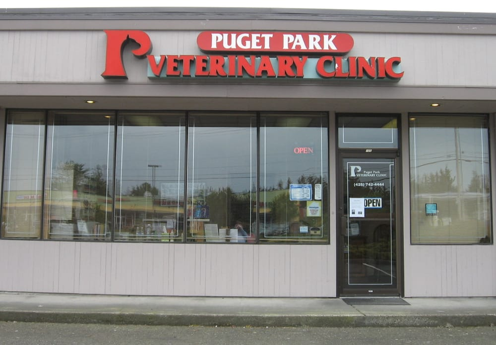 Dog Day Care Everett Wa