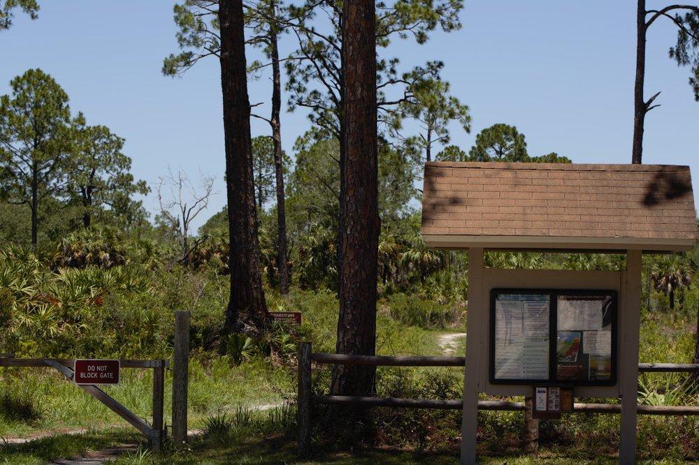 Cedar Key Scrub State Reserve: Cedar Key, FL
