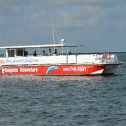 Scarlet Lady Dolphin Cruises 19 Photos 13 Reviews Boat