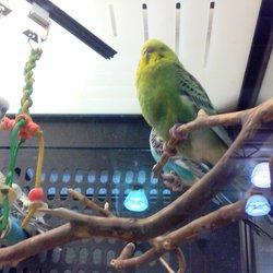Petsmart 18 Reviews Pet Training 2932 Nw 63rd St Oklahoma