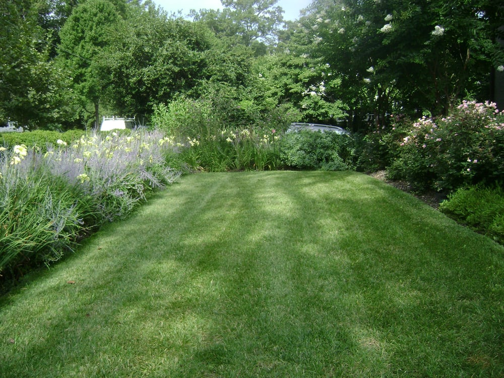 Mowing & More: 5910 Connecticut Ave, Chevy Chase, MD
