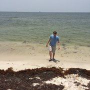Photo Of Dauphin Island West End Beach Al United States