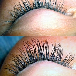 A Lash Above - Eyelash Service - 5899 Whitfield Ave, Sarasota, FL ...