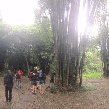 4ff8bb19ed Hike Maui - 240 Photos   231 Reviews - Tours - 285 Hukilike St ...