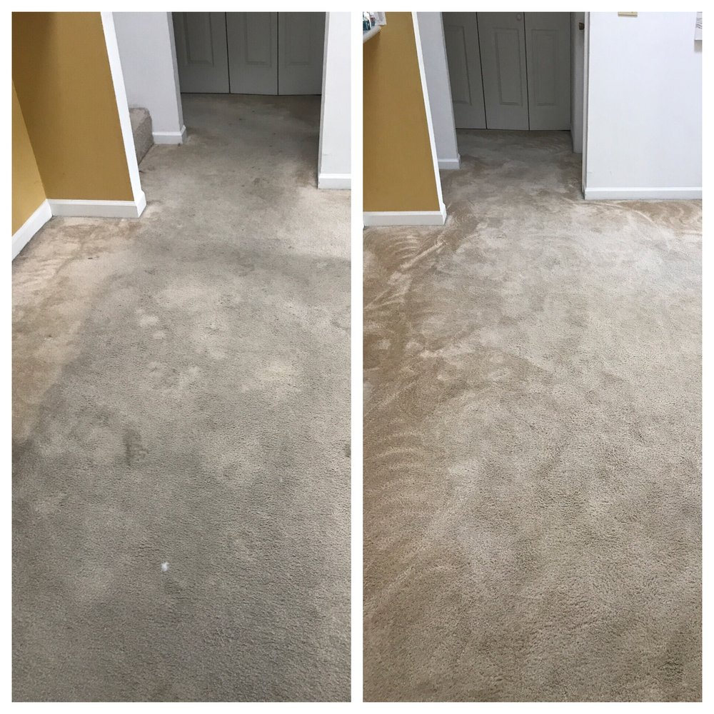 Drummond Carpet & Upholstery Care: Champaign, IL