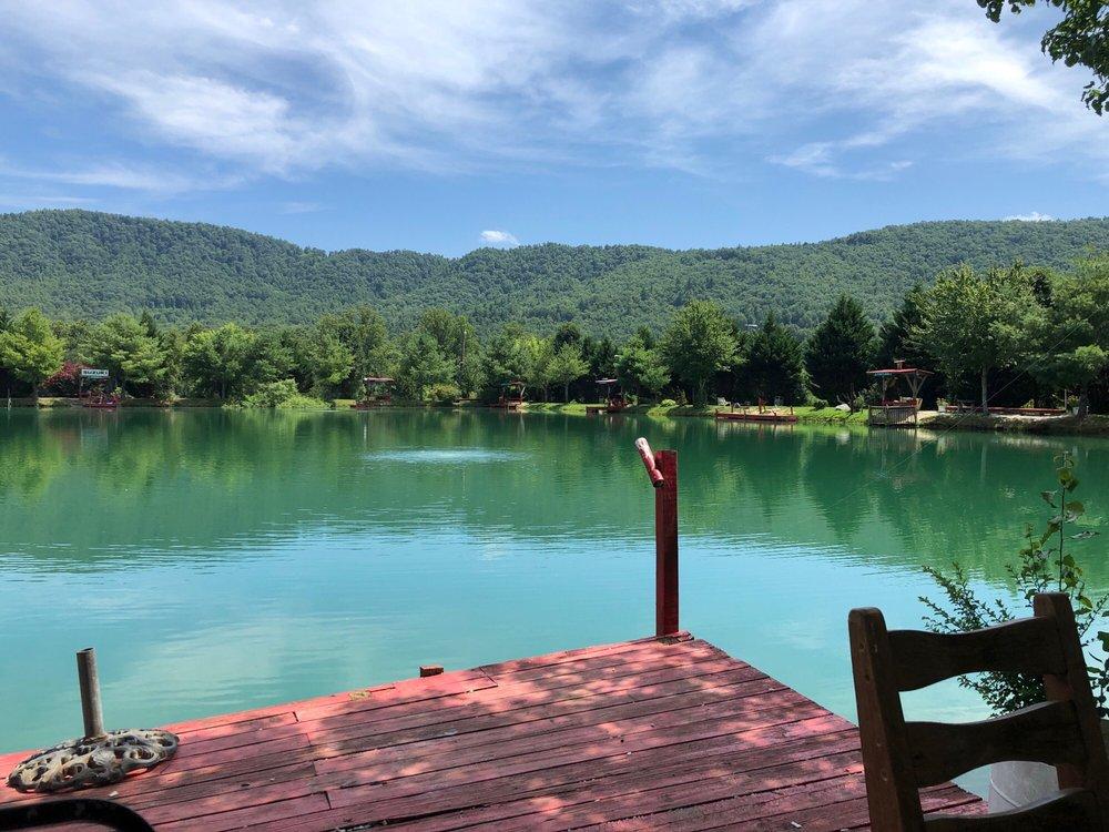 Crab Creek Catfish Pond: 441 Crab Creek Rd, Hendersonville, NC