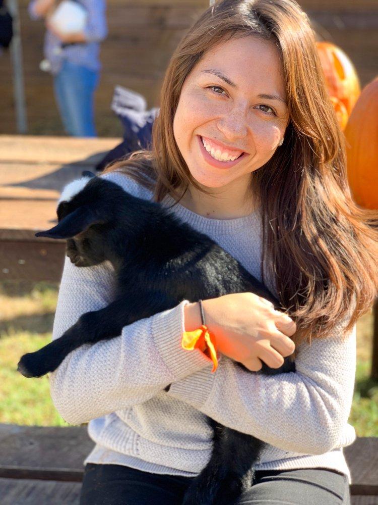 Social Spots from Spring Haven Farm