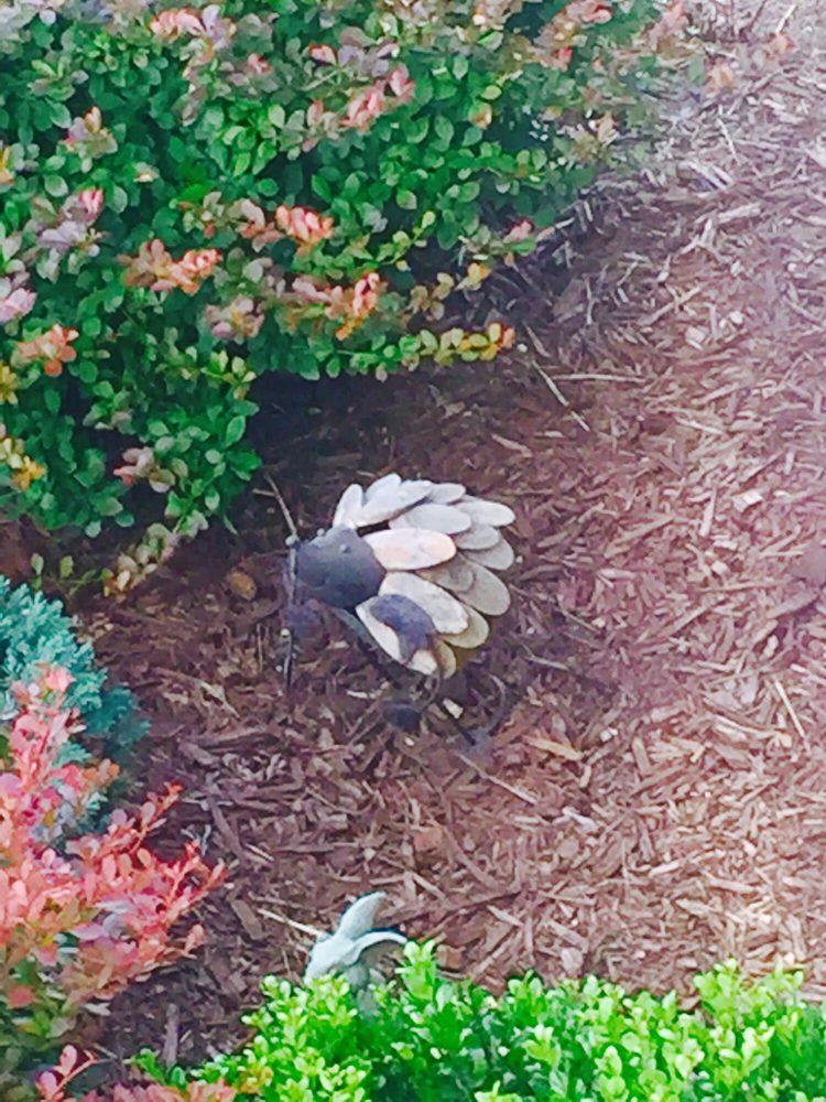 E-Scapes: 1996 Happy Creek Rd, Front Royal, VA