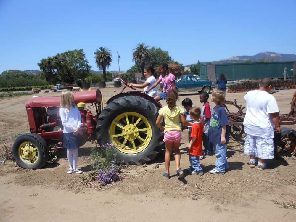 Creative Arts For Little Hearts: 145 Byerly Ct, Vallejo, CA