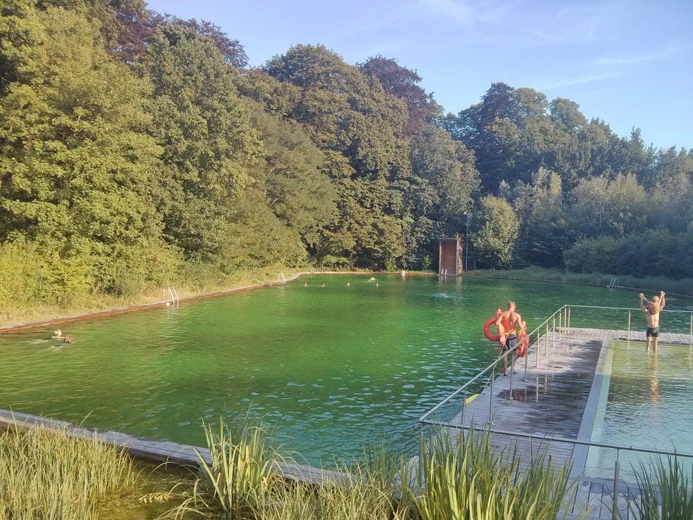 Zwemvijver boekenberg piscines van baurscheitlaan anvers
