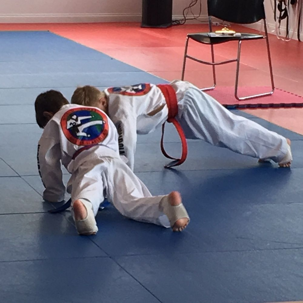 Master Scarsella's World Class Tae Kwon Do: 268 Inverness Center Dr, Birmingham, AL