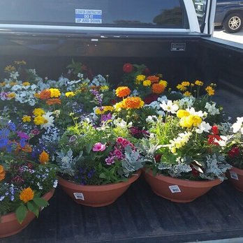 Photo Of Armstrong Garden Centers El Cajon Ca United States The Whole